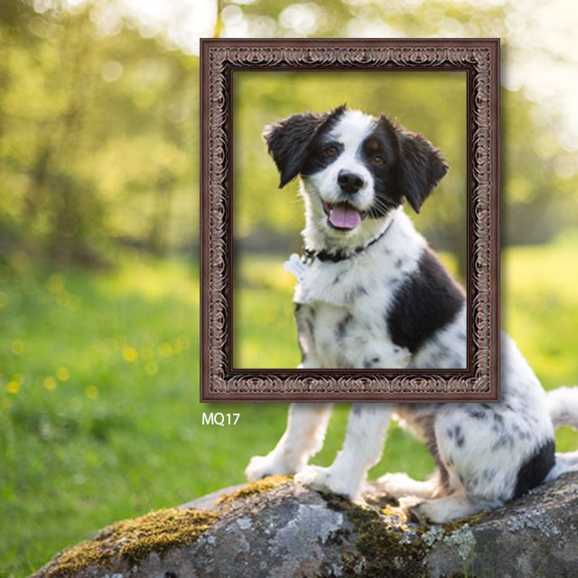 Espresso picture frame dog gifts presents